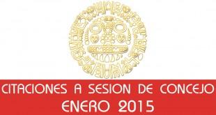 Citaciones a Sesión de Concejo - Enero 2015