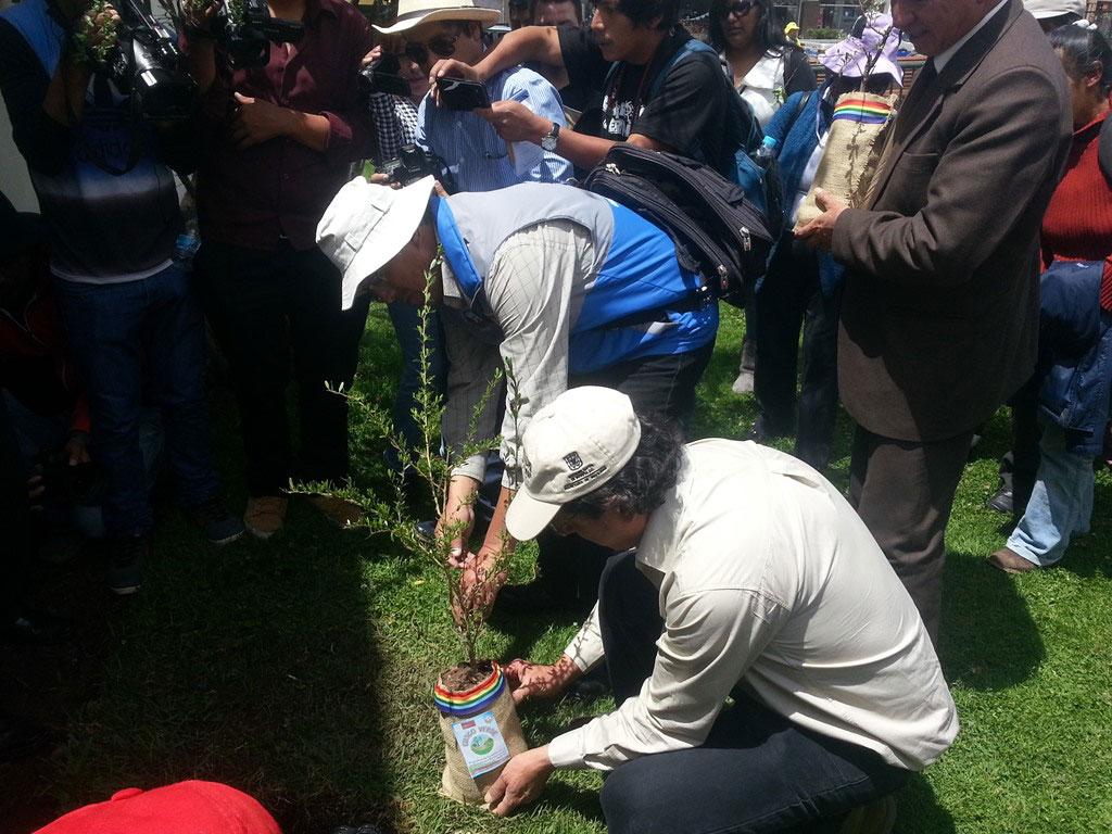 Cusco Verde 2015