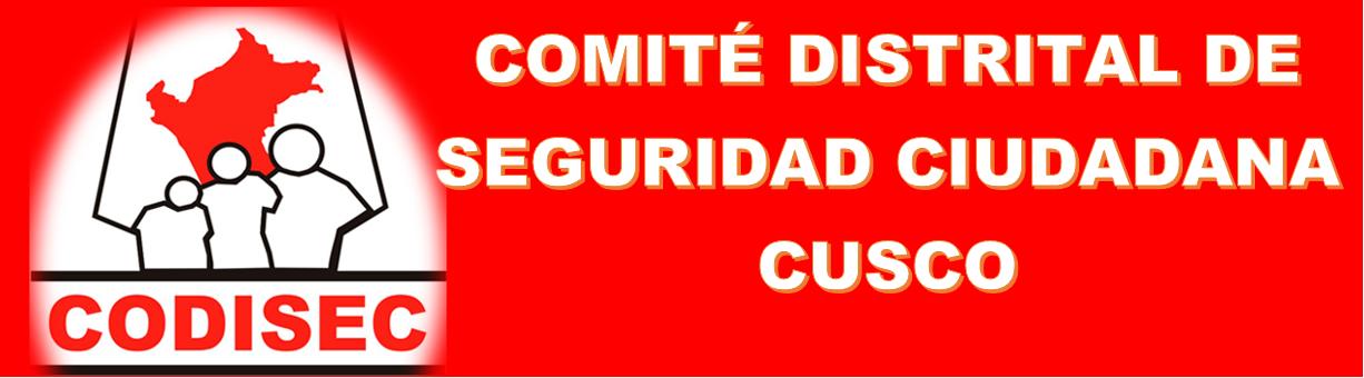 COMITE DISTRITAL DE SEGURIDAD CIUDADANA CUSCO 2016