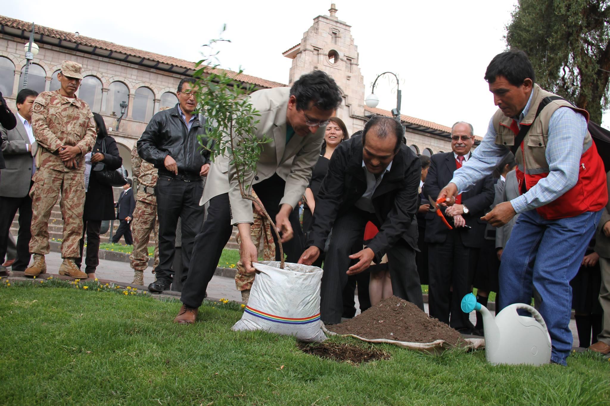 GOBIERNO MUNICIPAL DEL CUSCO INICIA CAMPAÑA DE FORESTACIÓN CON 30 MIL PLANTONES EN MARGEN DERECHA DE LA CIUDAD.